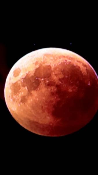De Maan door een bezoeker genomen met Nikon en 300mm lens