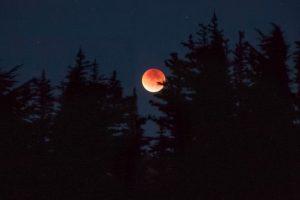 Totale maansverduistering op vrijdagavond 27 juli 2018 @ Sterrenwacht Gooi en Vechtstreek